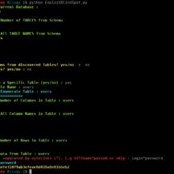 Blisqy - Exploit blind-SQL Injection in HTTP-Headers xploitlab