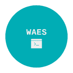 WAES - Web Auto Enum & Scanner and Dumps Files as Result