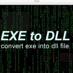 Convert exe into dll file